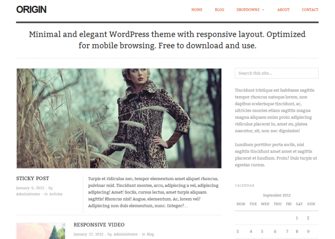 Origin Free Premium WordPress Theme 2012