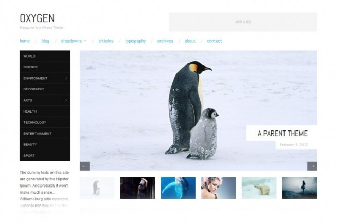 Oxygen, free WordPress theme
