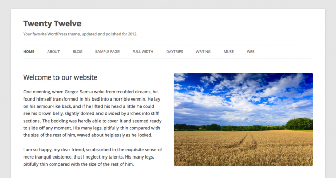 Twenty Twelve - default theme in WordPress 3.5