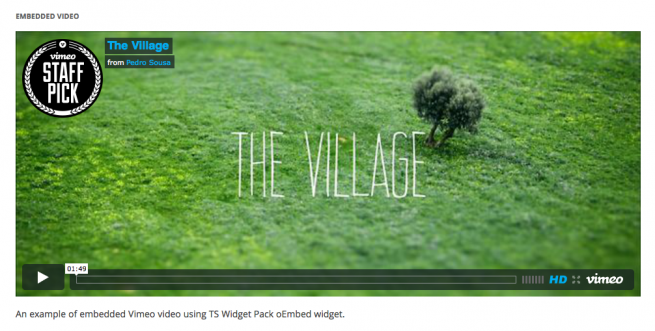 oEmbed Video with Caption Widget