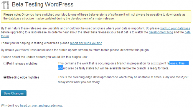 Beta Testing WordPress Plugin