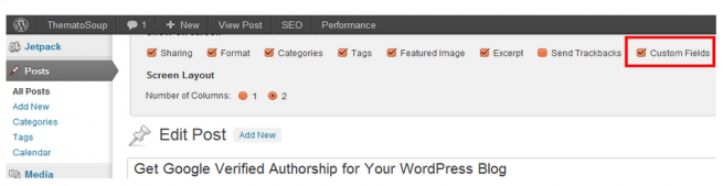 Enable Custom Fields in WordPress