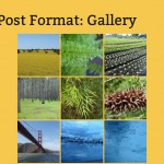 Gallery post format in Twenty Thirteen