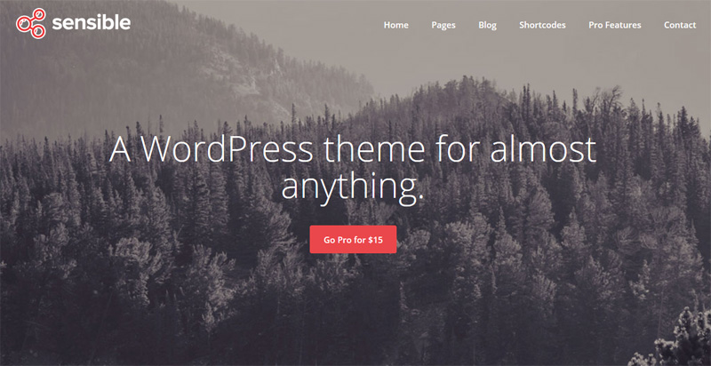 WordPress Template, Sensible