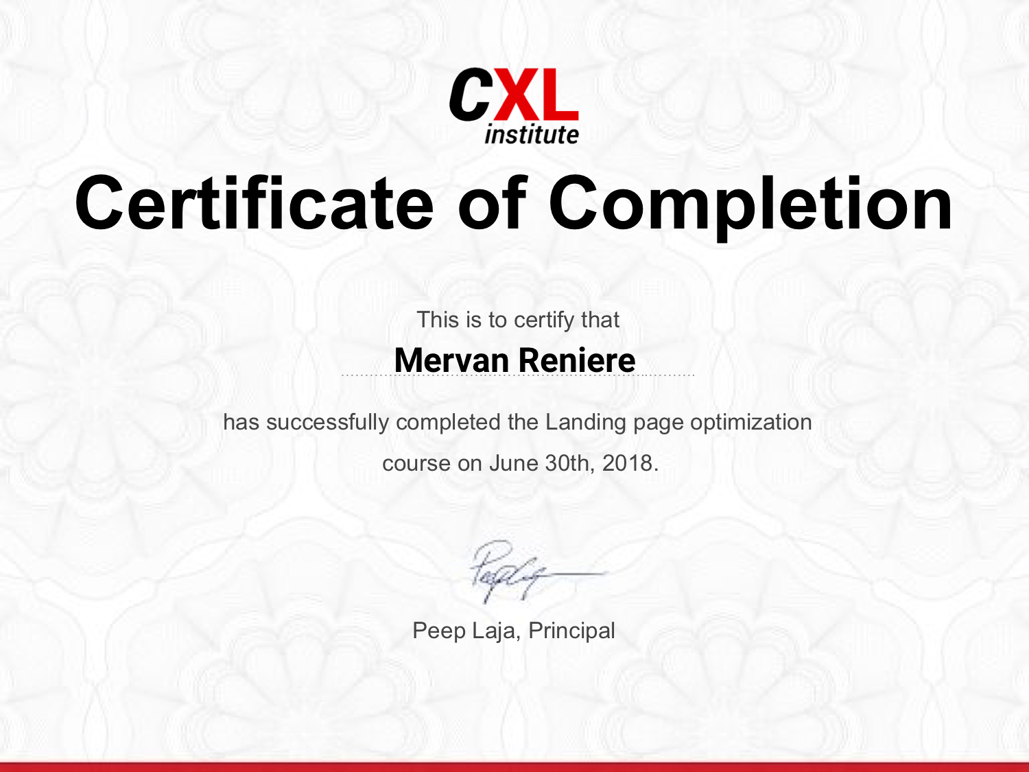 Landing Page Optimization CXL Course Review