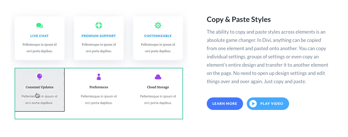 COpy Paste Styles Divi Leads WordPress Landing Page Builder